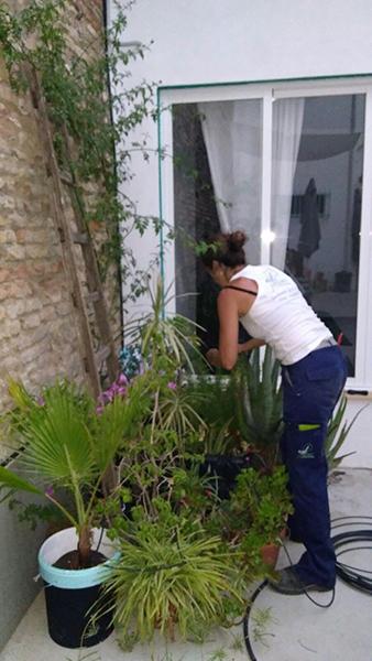 azuljardines.com_sistema-riego_La-Sin-Miedo-2