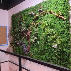 Patio verde. Restaurante Villafranca de Ordicia, Guipúzcoa